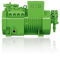 ecoline pump
